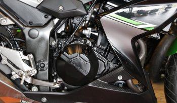 มือสอง Kawazaki Z300 2017 full